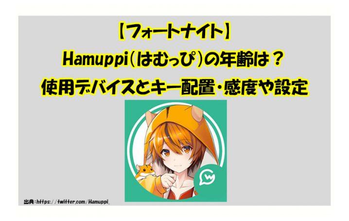 【フォートナイト】Hamuppi(はむっぴ)の年齢は?| 使用機器デバイスとキー配置・感度や設定を調べました!