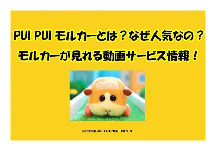PUI PUI モルカーとは?なぜ人気なの?モルカーが見れる動画サービス情報!
